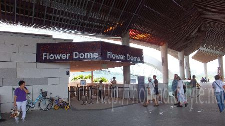 [シンガポール探訪記] Day8-2 Flower Dome and Cloud Forest