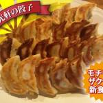 ウェブサイトで購入できる日光軒の ハラール 餃子