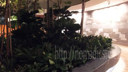 シンガポール boardwalk 夜景 10