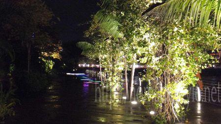 シンガポール boardwalk 夜景 14