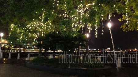 シンガポール ハーバーフロント 夜景 5