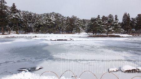 毛越寺 浄土庭園 1