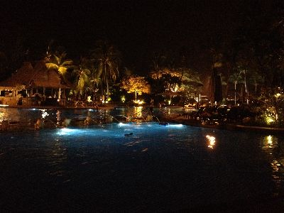 シャングリラの夜のプール2