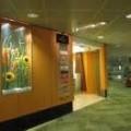 SATS Premier Club Lounge (T2)